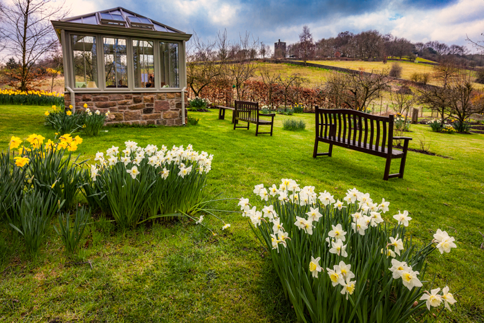 Chevin Brae - Open Garden - April 3 2016 007